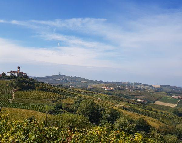 Un weekend nelle langhe: tra vino e tartufo