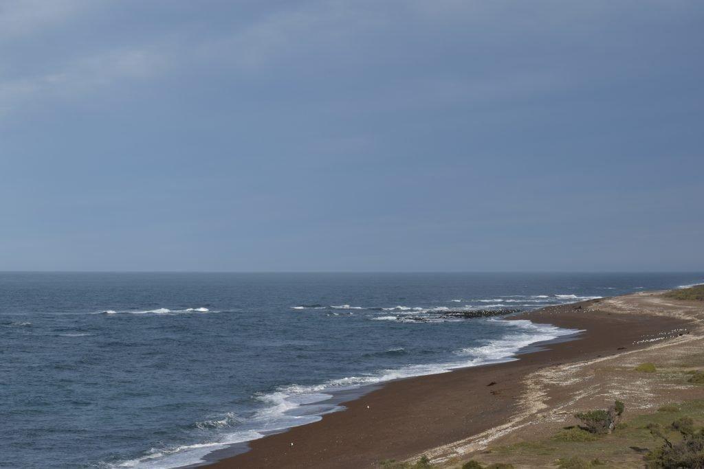 Punta Norte, Peninsula Valdes