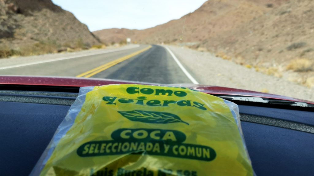 On the road tra le Ande dell'Argentina