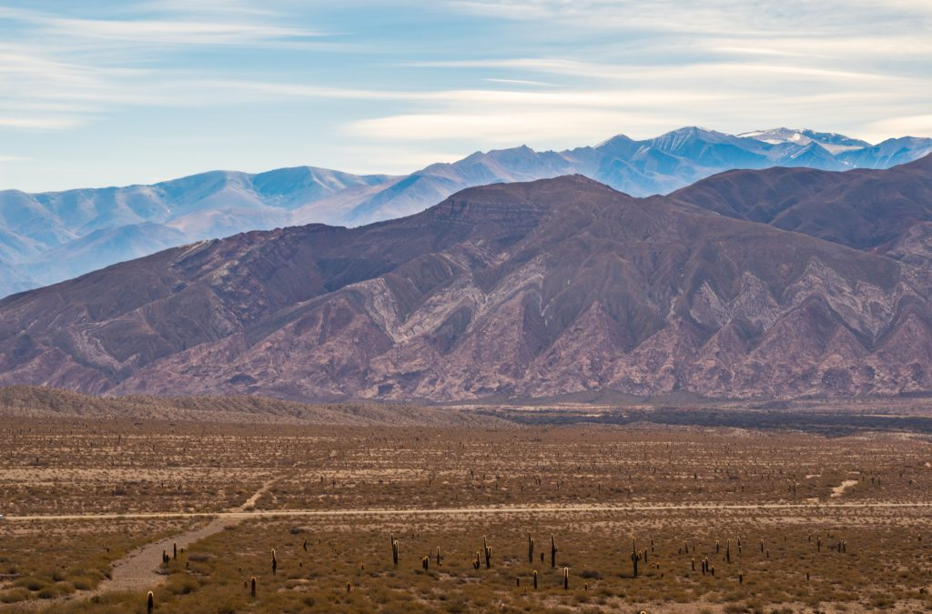 Parco Nazionale Los Cardones, Ande argentine