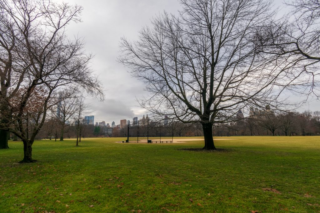 Great Lawn - Central Park, New York
