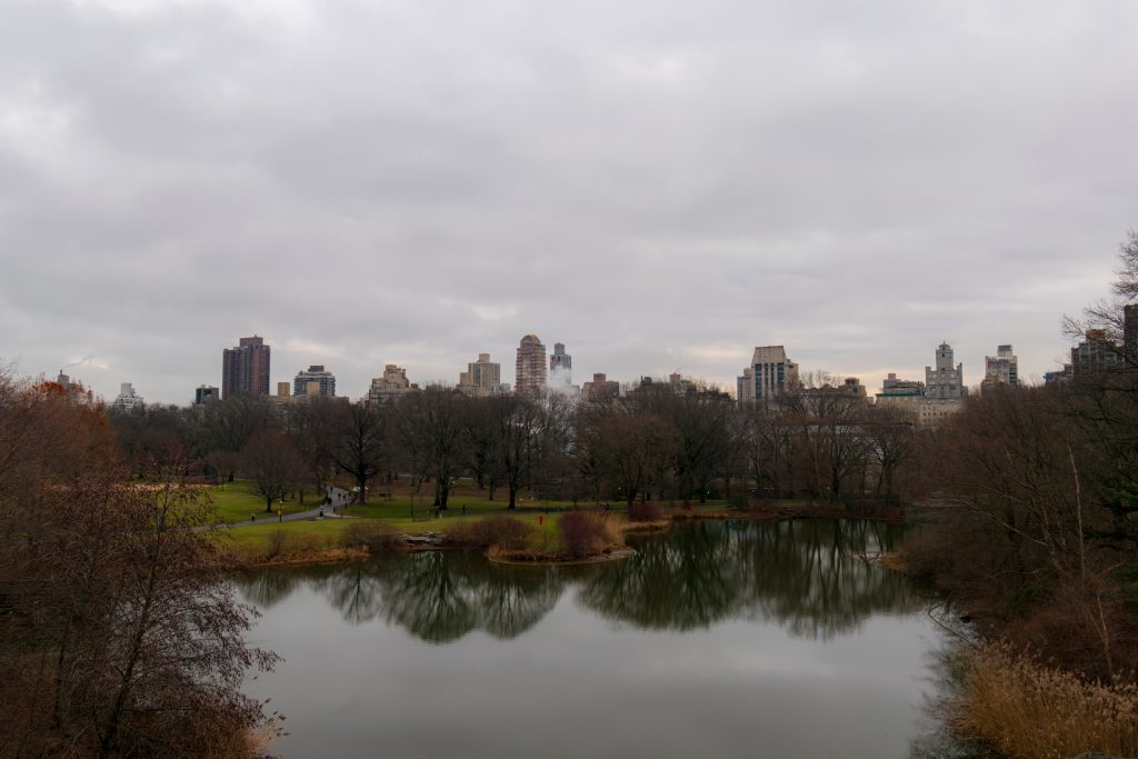 The Ramble - Central Park, New York